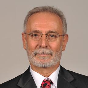 Momir Radicevic