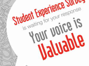 Student Experience Survey